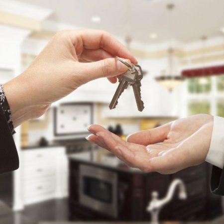 New Apartment Renter