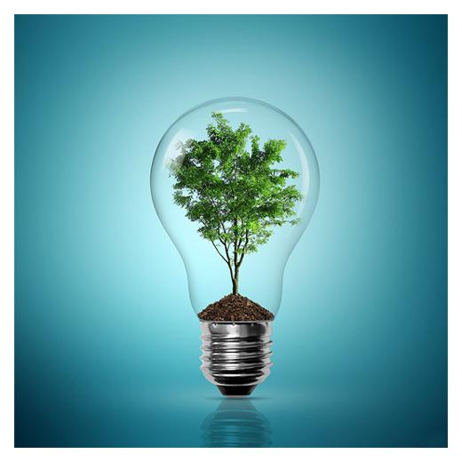 tree in light bulb